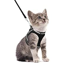 rabbitgoo Cat Harness and Leash Set for Walking Escape Proof, Adjustable Soft Kittens Vest with Reflective Strip for Extra Small Cats, Step-in Comfortable Outdoor Vest Harness, Black, S (Chest:10.0''- 13.0'')