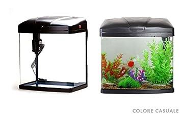 Takestop® Acuario 35 litros t38 F con sistema de filtración y iluminación 38 x 24.5 x 43 cm peces pescado tropicales Agua salada: Amazon.es: Electrónica
