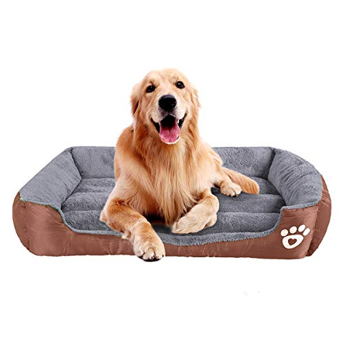 Thing Need Consider When Find Kong Xl Dog Crate Idow Info