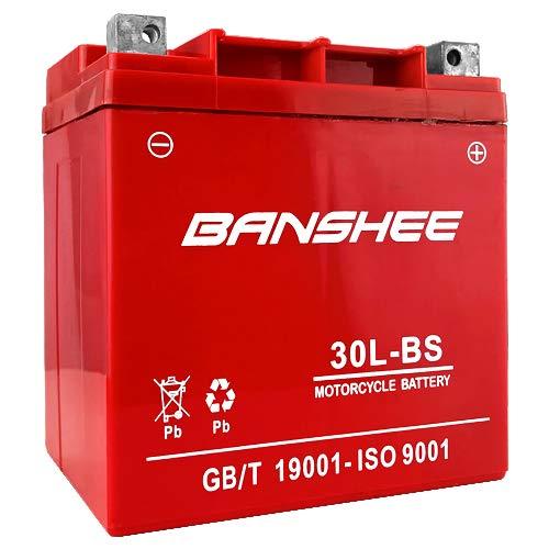 rzr 900 battery - 8
