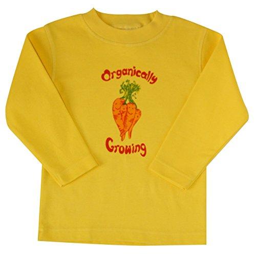 Long Sleeve Organic Cotton Baby Shirt TEE (5/6 yrs, - Sleeve Ecobaby Long Organics