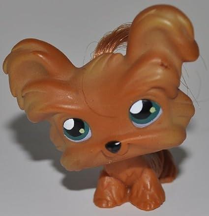 Amazoncom Shih Tzu 6 Littlest Pet Shop Retired Collector Toy