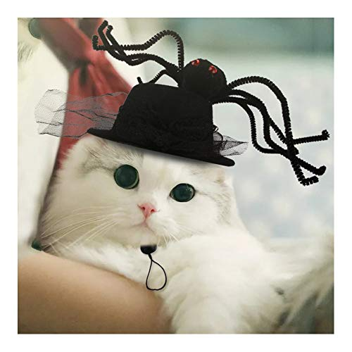 Fast Good Halloween Costumes (Fast and Good Cat Halloween Costume - Cat Spider Hat - Pet Spider Costume for Dogs Cats Pet)
