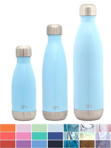 Simple Modern Stainless Steel Vacuum Insulated Double-Walled Wave Bottle, 17oz - Robin's Egg Blue (17 Ounce Vacuum Bottle)