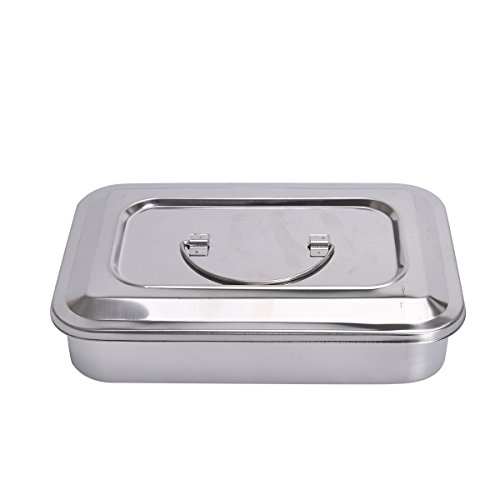 Annhua 9''/11.5'' Dental Instrument Tray,Stainless Steel Organizer Holder with Lid & Handle Grip (9'') by Annhua