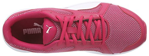 Puma Axis V4 Mesh - Zapatillas Unisex adulto Pink (rose red-white 03)