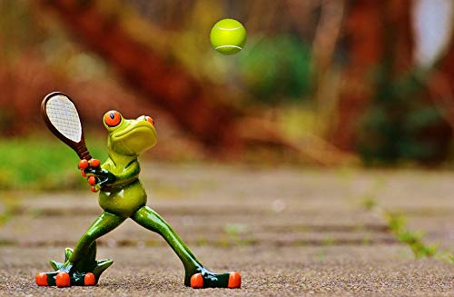 (Home Comforts Canvas Print Fun Fig Frog Cute Tennis Funny Sweet Vivid Imagery Stretched Canvas 32 x)