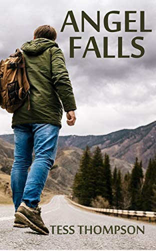 Book: Angel Falls by Tess Thompson