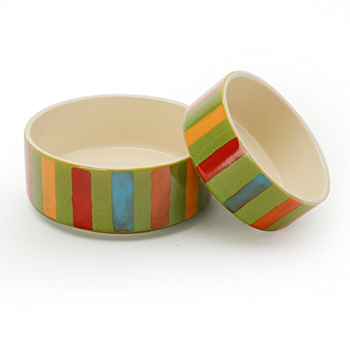 Signature Housewares Reactive Glaze Stoneware Pet Bowls (Stripes, Extra (Extra Small Bowl)