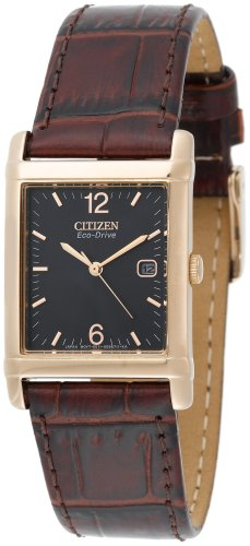 Citizen Men's BW0203-01E Eco-Drive Brown Leather Strap Gold-Tone Black Dial Watch