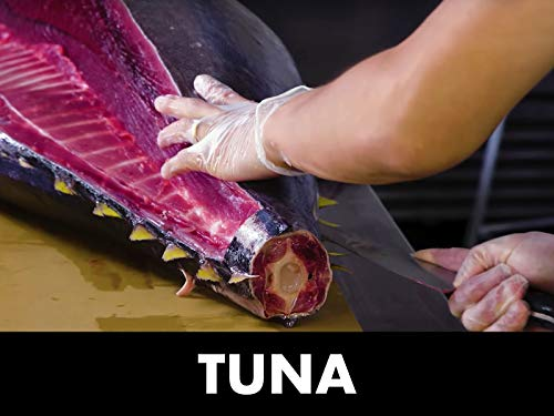 - How To Butcher a Whole Tuna: Every Cut of Fish Explained