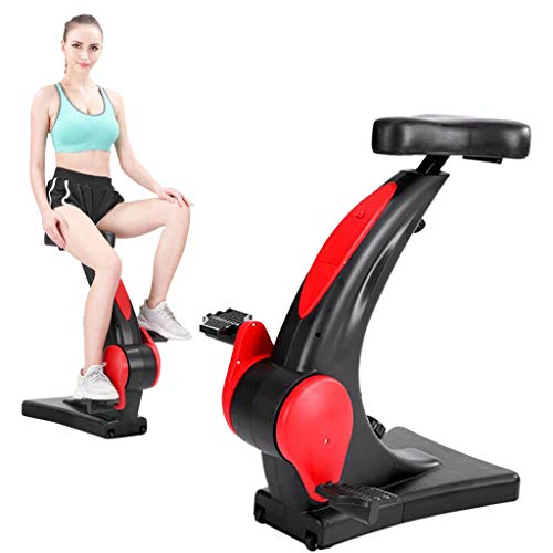 GFTA 【US Spot】 2020 Upgrade Fitness Bicycle - Indoor Exercise Bicycle Ultra-Quiet Exercise Bike Fitness Equipment Home Office Bicycle Magnetron Spinning Exercise Bike,Weight Loss Stepper