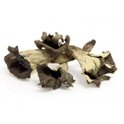 Trumpet Mushrooms - Dried Black Trumpets Mushrooms - 2 oz. Life Gourmet Shop