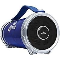 Corona Indoor/Outdoor Bluetooth Speaker- Blue