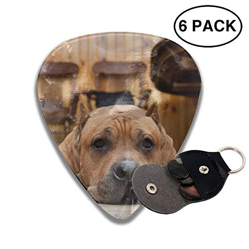 Colby Keats Guitar Picks Plectrums Brown Dog Floor Sadness Classic Electric Celluloid Acoustic for Bass Mandolin Ukulele 6 Pack 3 Sizes .96mm]()