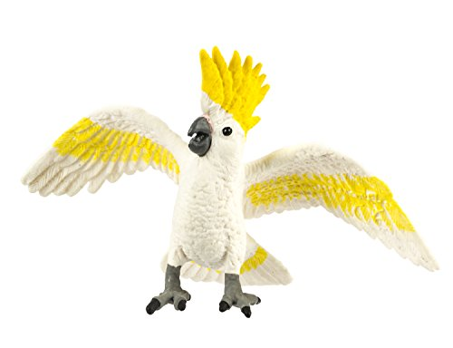 Safari: Cockatoo]()