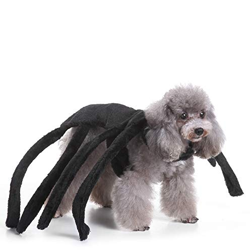 Costums For Dogs (Coppthinktu Spider Dog Costume Halloween Tarantula Pet Costumes Outfit Apparel Furry Spider)