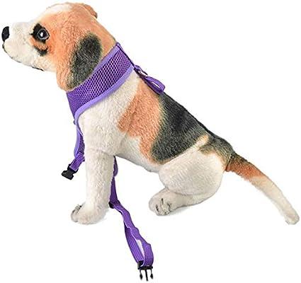 NGTFSNH Arnés para Perros Ajustable Acolchado y Ajustable para ...