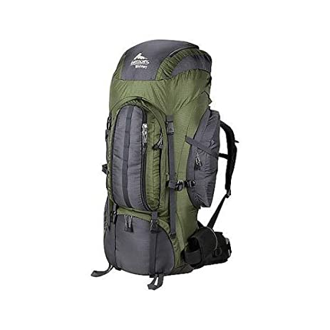 Amazon.com : Gregory Whitney 95 Backpack (Lichen, Large) : Internal ...
