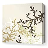 "Coral Stretched Wall Art in Moss Size: 34"" x 34"""