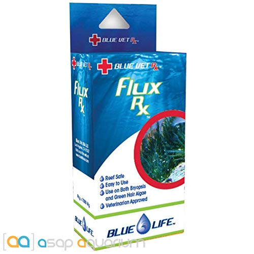 Fungus Fish Mouth - Blue Life Reef Flux 7000MG