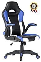 SEATZONE Racing Car Style Bucket Seat Gaming Chair with Flip-Up Armrest (Blue&White)