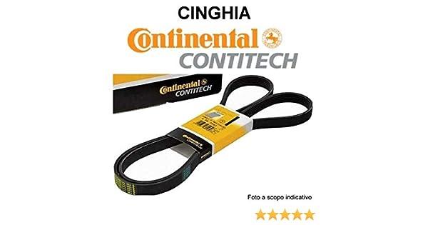 CONTITECH 6PK1670 CORREA: CONTITECH: Amazon.es: Coche y moto