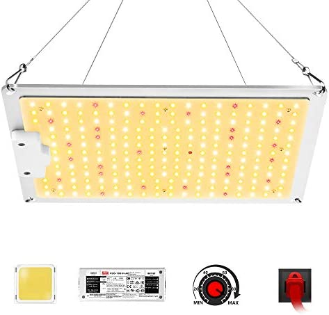 FSGTEK LED Grow Light 1000W, 234 Samsung LM281b Diodes, Dimmable MeanWell Driver, High PPFD Daisy Chain Full Spectrum Plant Lights for Indoor Plants Seedling Veg Bloom