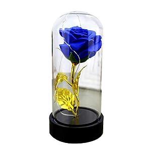 Himpokejg LED Glass Bottle Lamp Night Light Home Room Decor Artificial Rose Flower Gift 116