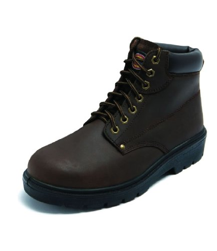 Boot Dickies Antrim Super Safety FA23333 Brown xnqOa60fRw