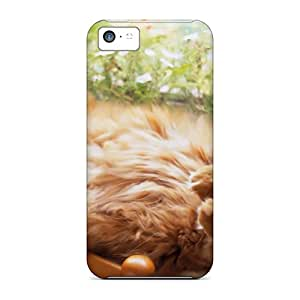 Quality CheapCases Case Cover With Ginger Cat Bliss Nice Appearance Compatible With Iphone 5c