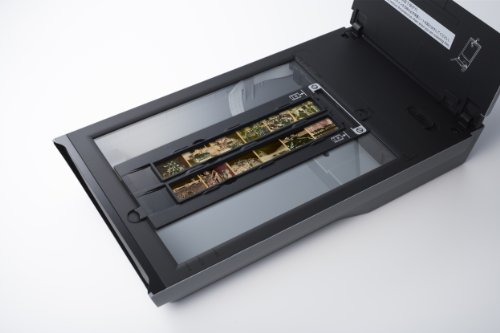 Canon CanoScan 9000F Color Image Scanner by Canon (Image #4)