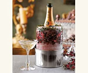 Amazon.com: Napa Style Champagne Chiller and Ice Mold Kit