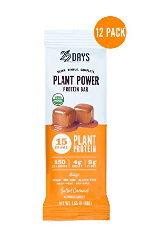 22 Days Nutrition Organic Protein Bar, Salted Caramel, 12 Count | Plant Based Protein Bars, Gluten Free, Vegan, Soy Free, Real Food, Dairy Free, 15g Protein, Low Sugar (4g), Fiber (9g)