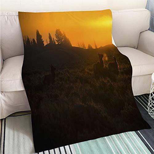 (BEICICI Customized Comfortable 100% Soft Premium Blanket Teton Sunrise Grand Teton National Park Fashion Ultra Cozy Flannel Blanket)