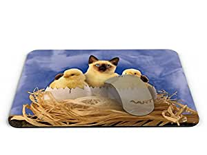 Birds nest and cat Rectangle Mouse pad - Mouse Pad / Mouse pad / Mousepad / Mousepad - AArt #MP027 (9.84 X 7.87 inches)