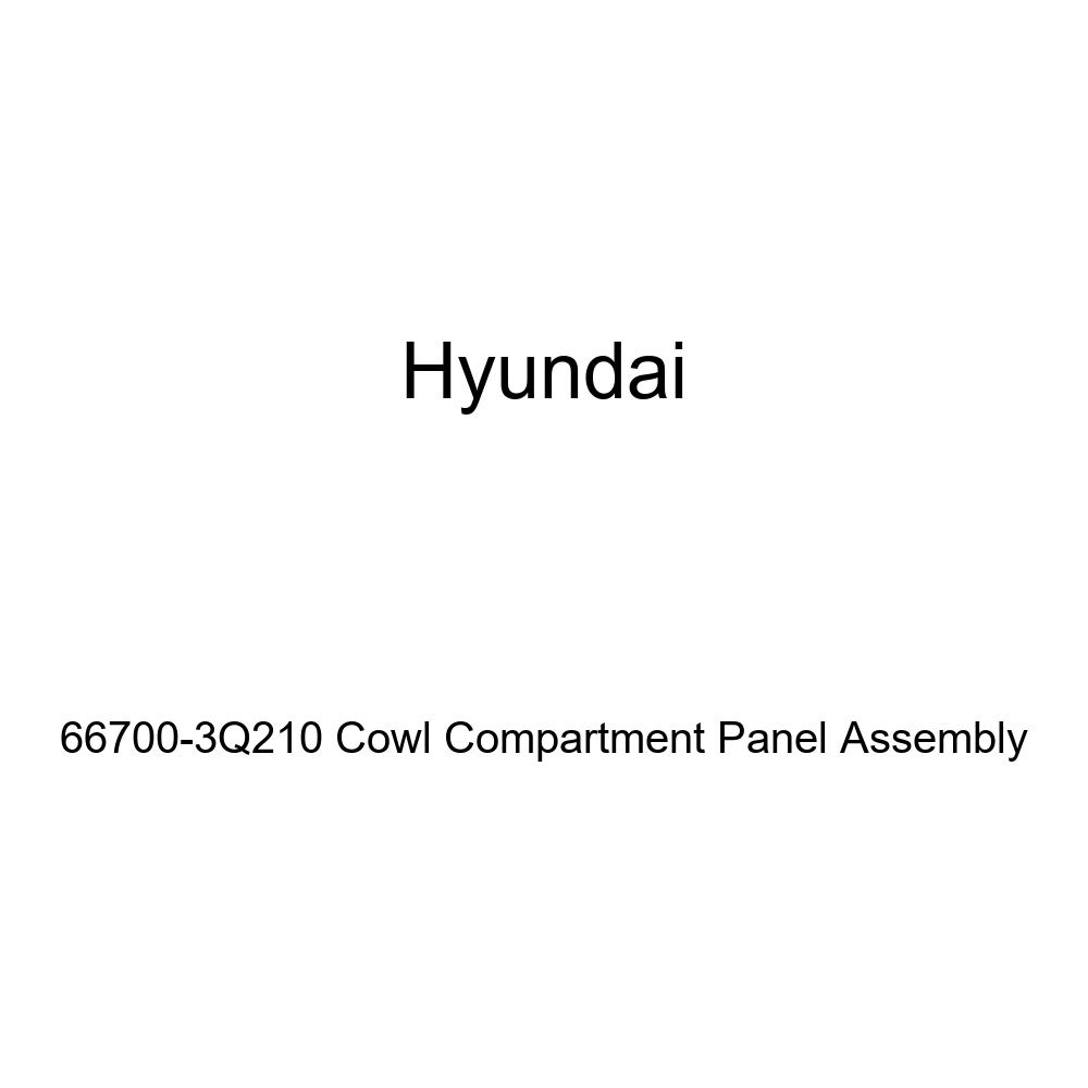 Genuine Hyundai 66700-3Q210 Cowl Compartment Panel Assembly