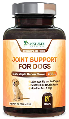 Pet Joint Supplement For Dogs, Chewable Tablets 750mg - Advanced Hip and Joint with Glucosamine Chondroitin, MSM, Turmeric, Hyaluronic Acid, Calcium, Magnesium - Tasty Maple Bacon Flavor - 120 - Glucosamine Advanced Joint Care