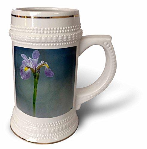 Mist Iris (3dRose Chris Lord Botanica - Iris Mist Blue Floral Flower - 22oz Stein Mug (stn_55962_1))