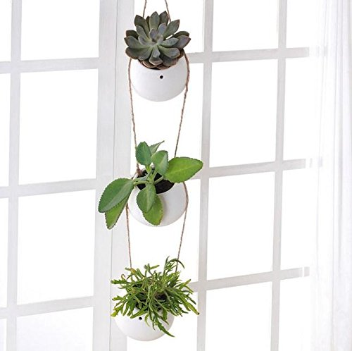 Kingbuy Hanging Planter Flower Pot Freestanding