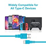 USB C Charger for Nintendo Switch, Fast Charging