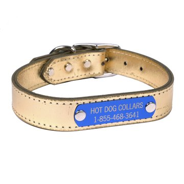 Hot Dog Collars Personalized Leather Dog Collar with Engraved Nameplate, Gold Leather, X-Large