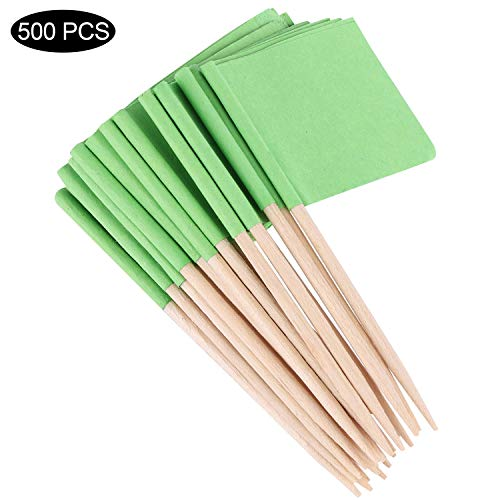 500 Pieces Blank Toothpick Flags Green Flags Labeling Marking for Cake Food Cocktail Decorative