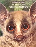 The Truth about Animal Senses, Bernard. Stonehouse and Esther Bertram, 0439518075