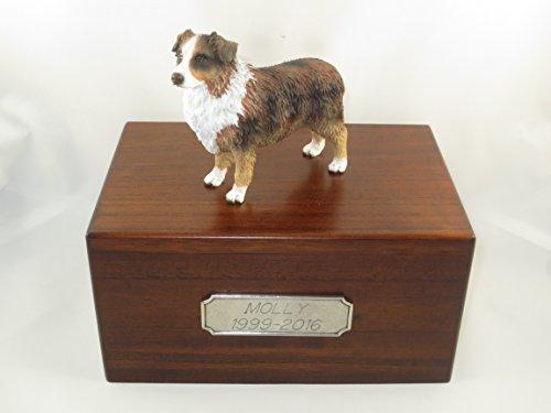 (Beautiful Paulownia Medium Wooden Urn with Red Docked Austrailian Shepherd Figurine & Pewter Personalized Engraving)