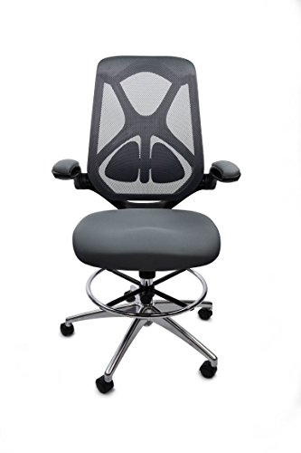 (High Back Ergonomic Mesh Office Chair by Frasch| Adjustable Lumbar Support, Memory Foam Molded Seat, Foot Ring, Chrome Base and Flip-up Arms)