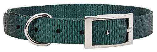 Country Brook Design® Forest Green Nylon Premium Traditional Dog Collar - Large