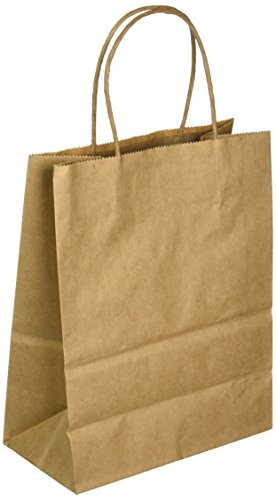 "Tinted Kraft Bag Medium 7.75""X9.75""X4.75""-Natural Kraft"
