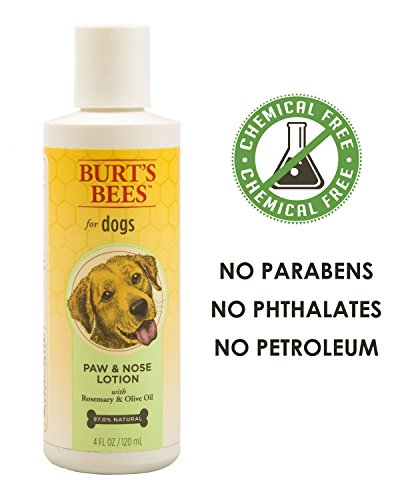 Burt S Bees Dog Paw Nose Lotion