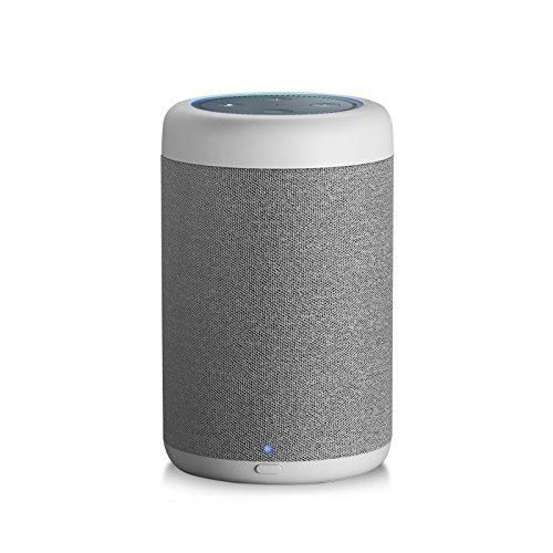 GGMM D6 Portable Speaker for Amazon Echo Dot 2nd Generation, 20W Powerful True 360 Alexa Speakers (DOT SOLD SEPARATELY) by GGMM